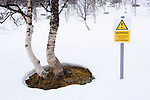 Spoof hazard sign in the forest