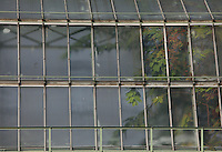 Tropical Rainforest Glasshouse (formerly Le Jardin d'Hiver or Winter Gardens), 1936, René Berger, Jardin des Plantes, Museum National d'Histoire Naturelle, Paris, France. Low angle view of windows of the glass and metal structure showing the luxuriant foliage within.