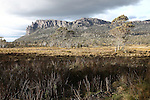 Mount Pelion West, as seen from the Overland Track in Cradle Mountain-Lake St. Clair National Park in Tasmania, Australia. Nov. 19, 2012.