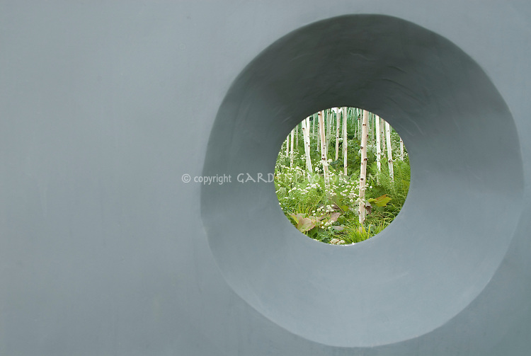 Round window from modern gray wall with surprising discovery view of white bark birch trees and white flowered plants
