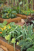Dad's Garden of vegetables and flowers, raised beds, with plant label sign that says Dad's Garden