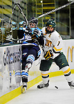 23 November 2011: University of Maine Black Bears' forward Tori Pasquariello, a Freshmen from Mississauga, Ontario, is checked into the boards during game action against the University of Vermont Catamounts at Gutterson Fieldhouse in Burlington, Vermont. The Lady Bears defeated the Lady Cats 5-2 in Hockey East play. Mandatory Credit: Ed Wolfstein Photo