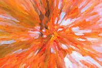 An Autumn abstract of a Maple tree against the sky.  The image was creatively modified to resemble a painting.