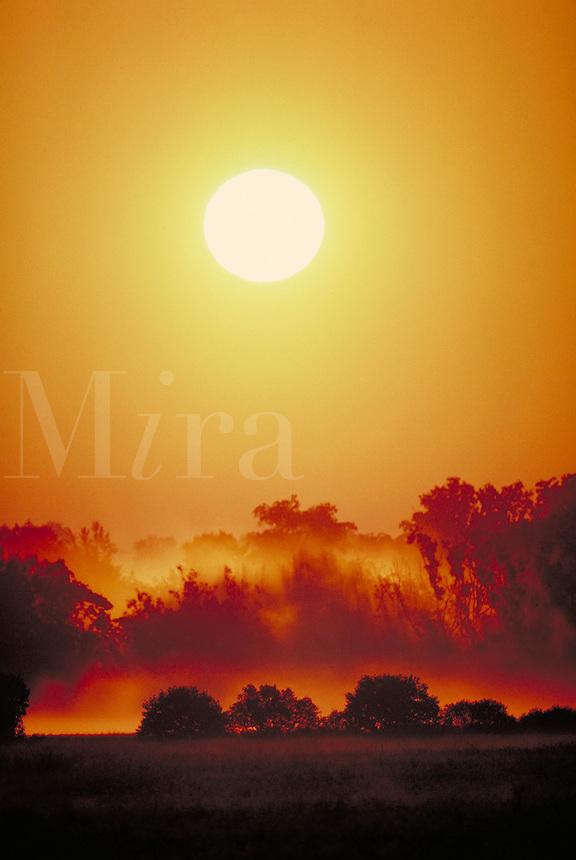 Summer sunrise over a field in Oswego County, NY. New York USA Central NY.