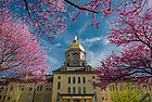 April 22, 2017; North side of the Main Building, Spring 2017 (Photo by Matt Cashore/University of Notre Dame)