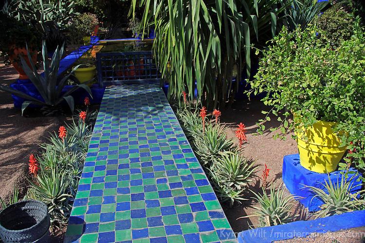 Majorelle garden mira terra images travel photography for Jardin yves saint laurent maroc