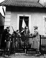 Frenchwoman exclaims to neighbor and to American soldier: &quot;Tout Belfort Est Libre&quot; (All Belfort is liberated).  November 25, 1944. Leibowitz. (Army)<br /> NARA FILE #:  111-SC-196728<br /> WAR &amp; CONFLICT #:  1052
