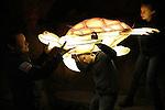 Foto: VidiPhoto<br /> <br /> ARNHEM - Medewerkers van Koninklijke Burgers&rsquo; Zoo leggen donderdagavond de laatste hand aan het lichtspektakel van het lichtevenement Burgers&rsquo; Light dat vrijdag en zaterdag start met een &lsquo;sneak preview&rsquo;, waarna het lichtspektakel met honderden dierfiguren van 17 februari tot en met 5 maart elke avond in het Arnhemse dierenpark is te zien. Het park blijft tijdens Burgers&rsquo; Light extra lang open tot 21.00 uur. De enorme &lsquo;lichtshow&rsquo; is ieder jaar een groot succes en dit jaar groter dan ooit. Burgers&rsquo; Light is een van de extra evenementen die de dierentuin tijdens schoolvakanties organiseert, om zo meer aandacht te vragen voor de ecosystemen in de wereld.