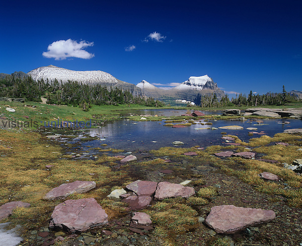 Glacial pond or tarn near timberline and distant Garden Wall, Glacier National Park, Montana, USA.