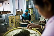 Factory workers are seen sorting out the tea leaves at Makaibari Tea Estate factory, Kurseong in Darjeeling, India.