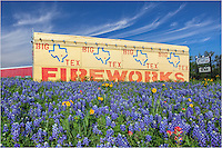Driving back from a morning spent taking in the bluebonnets, I had to stop at this fireworks stand in Spicewood, Texas as it was surrounded by painbrush, coreopsis and a sea of blue. I thought the sign was appropriate - Fireworks!