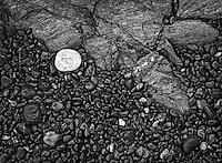 A white rock sits among small, damp beach pebbles on a beach near Seldovia, AK.