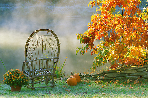 Bent willow chair facing out towards lake with rising mist sitting next to orange foliage of sessafras treee and other touches of color- pumpkins, mums, and rock wall