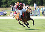 Polo at the Manor 2011