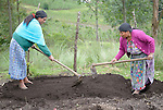 Martina Lopez (left) and Teresa Diaz prepare a raised bed in a shared vegetable garden in San Luis, a small Mam-speaking Maya village in Comitancillo, Guatemala. Women in the community have worked together on several agricultural and animal raising projects with help from the Maya Mam Association for Investigation and Development (AMMID).