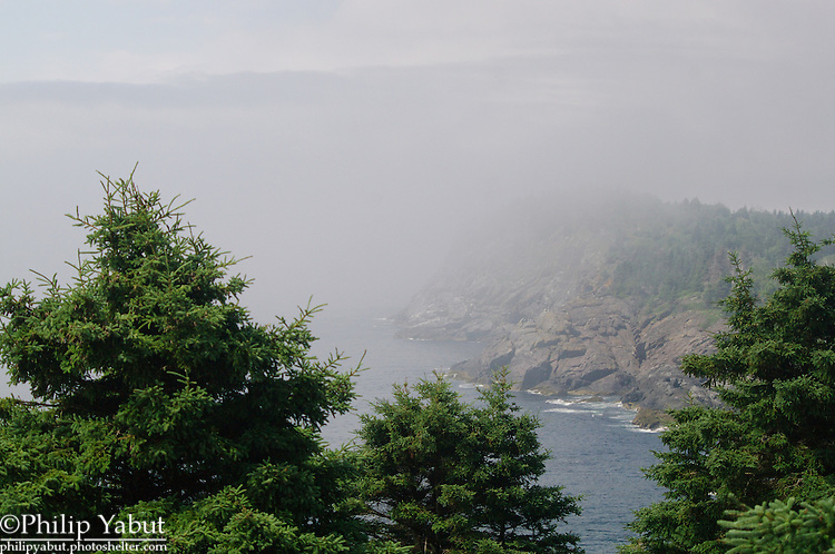 Whitehead, a 160-foot outcropping on the eastern end of Monhegan Island, finds itself shrouded by the remnants of an early morning fog.