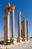 Baths of Diocletian, Palmyra, Syria. Ancient city in the desert that fell into disuse after the 16th century.