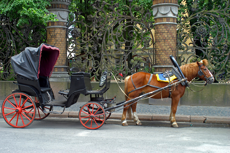 Europe russia st petersburg horsedrawn carriage awaits on an