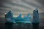 Antarctic Nature