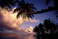 """The largest purchase to date for the Nature Conservancy is the Palmyra an atoll situated about 300 miles north of the equator.  The cook at their makeshift camp uses a palm tree as a rope swing. Palmyra has five times as many coral species as the Florida Keys and three times as many as Hawaii.  It is home to the world's largest invertebrate, the rare coconut crab, and a population of red-footed booby birds second only to that of the Galapagos.  It is the last marine wilderness area left in the U.S. tropics and is home to the last remaining stands of Pisonia grandis beach forest in the world.  Palmyra was a US Navy supply base in World War II, the site of a proposed nuclear waste dump, an unsuccessful coconut plantation and of various development schemes.  Palmyra is most famous for the 1974 slaying  of a married couple which became the subject of the best-selling book """"And the Sea Will Tell,"""" by Vincent Bugliosi."""