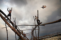 A fisherman throws a carp from on top of a wooden frame at Wagenia Falls on the left bank of the Congo River, near Kisangani, DR Congo. The left bank consists of largest series of wooden frames stretching across a fast body of water.