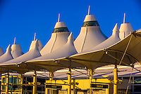 The tent like roof of the Jeppesen Terminal, Denver International Airport, Denver, Colorado USA.