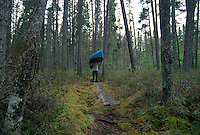 A MAN PORTAGES A CANOE THROUGH THICK FOREST IN QUETICO PROVINCIAL PARK IN ONTARIO CANADA.