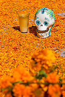 A decorated scull is placed at the altar of the dead (altar de muertos), a religious site honoring the deceased, during the Day of the Dead celebration in Morelia, Michoacán, Mexico, 1 November 2014. Day of the Dead ('Día de Muertos') is a syncretic religious holiday, celebrated throughout Mexico, combining the death veneration rituals of the ancient Aztec culture with the Catholic practice. Based on the belief that the souls of the departed may come back to this world on that day, people gather on the gravesites praying, drinking and playing music, to joyfully remember friends or family members who have died and to support their souls on the spiritual journey.
