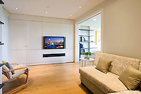 Sleek Wall Mounted TV