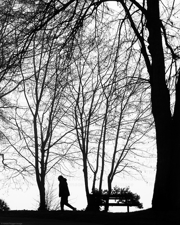 Silhouetted man walking through tall trees with a bench covered in a wreath.