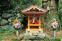 A Shinto shrine up on Mount Kurama is there to honor the spirit, or kami, of a giant Cryptomeria tree.