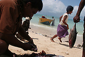 Fishermen with their catch of fish, on the beach, on the island of Kiribati in the Pacific Ocean. The islands, and their way of life, are endangered by rising sea water levels which are eroding the fragile atoll, home to approximately 92,000 people.