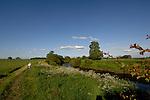 River Ure,Boroughbridge, North Yorkshire, England.