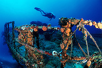 Diver on the Wreck of the WIT Shoal<br />