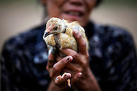 An ethnic Cham Muslim woman holds a chicken on banks of Mekong river in Phnom Penh July 29, 2013. About 100 ethnic Cham families, made up of nomads and fishermen without houses or land who arrived at the Cambodian capital in search of better lives, live on their small boats on a peninsula where the Mekong and Tonle Sap rivers meet, just opposite the city's centre. The community has been forced to move several times from their locations in Phnom Penh as the land becomes more valuable. They fear that their current home, just behind a new luxurious hotel under construction at the Chroy Changva district is only temporary and that they would have to move again soon. Picture taken July 29, 2013.  REUTERS/Damir Sagolj (CAMBODIA)