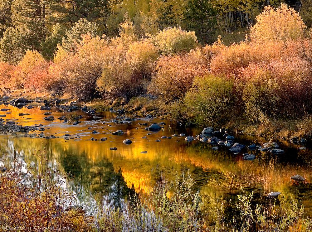 Little Truckee River in Autumn
