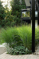 The fronds of a vivid green zebra grass planted in an adjacent flowerbed create a sharp contrast to the strict black and white architecture of the house