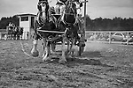 2011-Draft Horse Hitch Show.