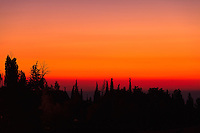 Trees on Jerusalem's Mount Zion are silhouetted against a hazy red sky shortly before sunrise.