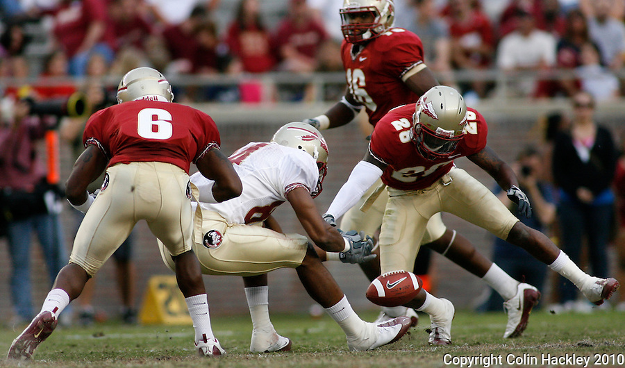 TALLAHASSEE, FL 4/10/10-FSU-SPRING FB10 CH-Gold's Rodney Smith, center, can't hang onto a pass a Gerald Demps, left, Mister Alexander and Dionte Allen, right close during second half Spring Game action Saturday at Doak Campbell Stadium in Tallahassee. .COLIN HACKLEY PHOTO