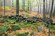 Stone wall at Madame Sherri Forest in Chesterfield, New Hampshire USA during the autumn months.