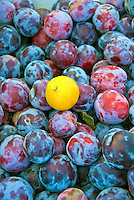 Farm-fresh produce fresh, fruit, Red Plums, Single Yellow Lemon