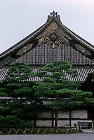 Kyoto: Ninomaru Palace, Nijo Castle, 1603. Photo '81.