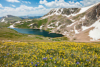 Alpine environment int he Beartooth Mountains in the Shoshone National Forest Wyoming