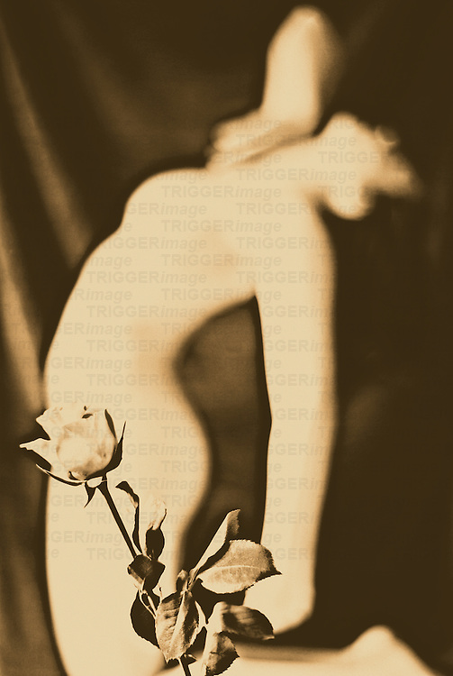 A naked fremale figure leaning backwards with a rose in the foreground