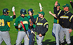 19 April 2009: Members of the University of Vermont Catamounts celebrate scoring against the University at Albany Great Danes at Historic Centennial Field in Burlington, Vermont. The Great Danes defeated the Catamounts 9-4 in the second game of a double-header. Sadly, the Catamounts are playing their last season of baseball, as the program has been marked for elimination due to budgetary constraints on the University. Mandatory Photo Credit: Ed Wolfstein Photo