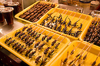 Deep fried grasshoppers, silkworms and scorpions for sale in the Night Market, Wangfujing Street, Beijing, China