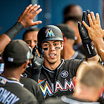 1 March 2017: Miami Marlins outfielder Christian Yelich returns to the dugout after scoring in Spring Training action against the Houston Astros at the Ballpark of the Palm Beaches in West Palm Beach, Florida. The Marlins defeated the Astros 9-5 in Grapefruit League play. Mandatory Credit: Ed Wolfstein Photo *** RAW (NEF) Image File Available ***