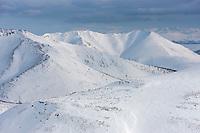 Caribou of the Porcupine herd dot the snow covered Brooks range mountains, north of Chandalar lake, arctic Alaska.