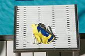9/29/07 Women's swimming Maize and Blue intrasquad scrimmage at Canham Natatorium.